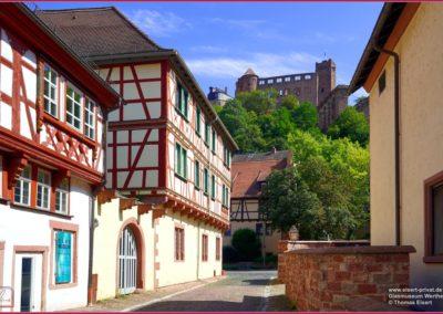 Glasmuseum Wertheim 011